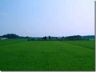 成田空港-横芝屋形海岸リムジンバス@千葉県成田市-横芝町海岸>公共交通機関で蓮沼海浜公園に行ってみた。