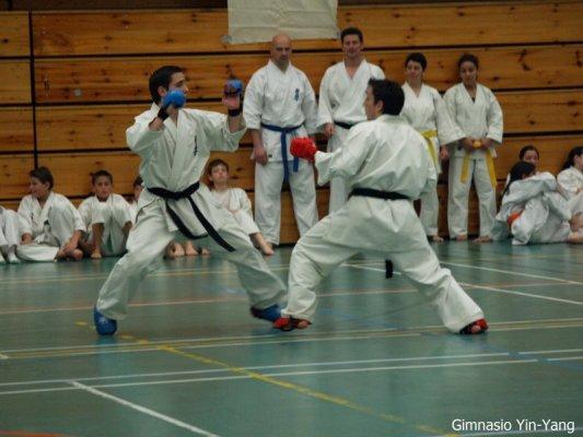 kumite wuko gemelos