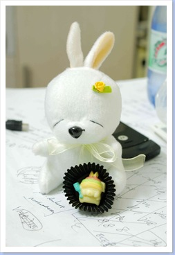 TORO兔